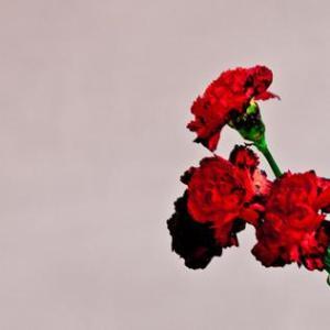 John_Legend_Love_in_the_Future