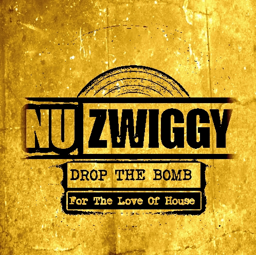 NuZwiggyDropTheBombForTheLoveOfHouse.jpg